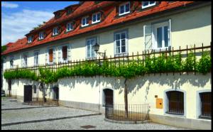 Haus der Alten Rebe